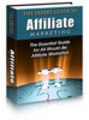 Thumbnail The Expert Guide to Affiliate Marketing (with PLR)